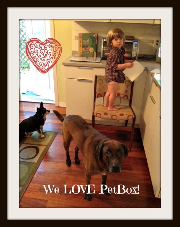 PetBox